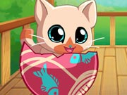 My Pocket Pets: Kitty C…